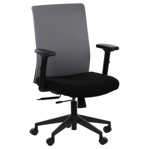 Office chair RIVERTON - fabric backrest, different colours